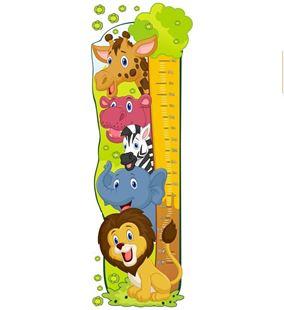 Obrázok Meter na stenu - Zoo